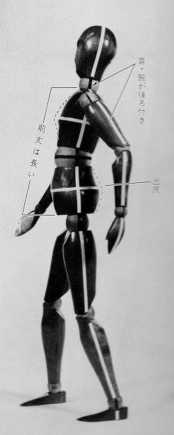 1鳩胸出尻体型人形.jpg